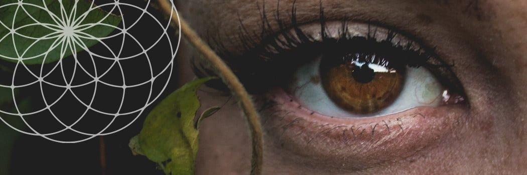 eye exercises improve vision