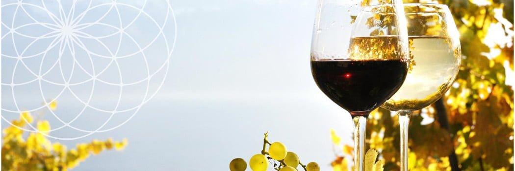 organic beer wine