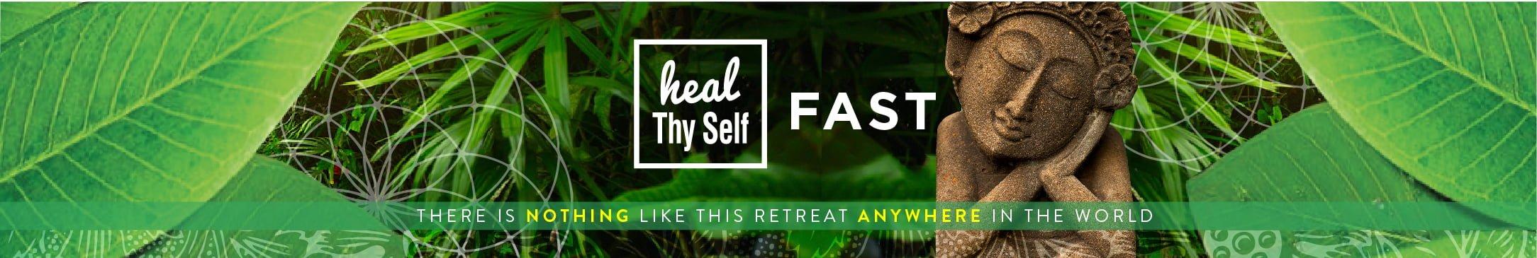 heal thy self fast